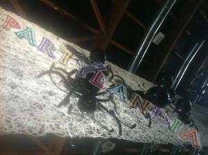 Halloween al Ceghedaccio