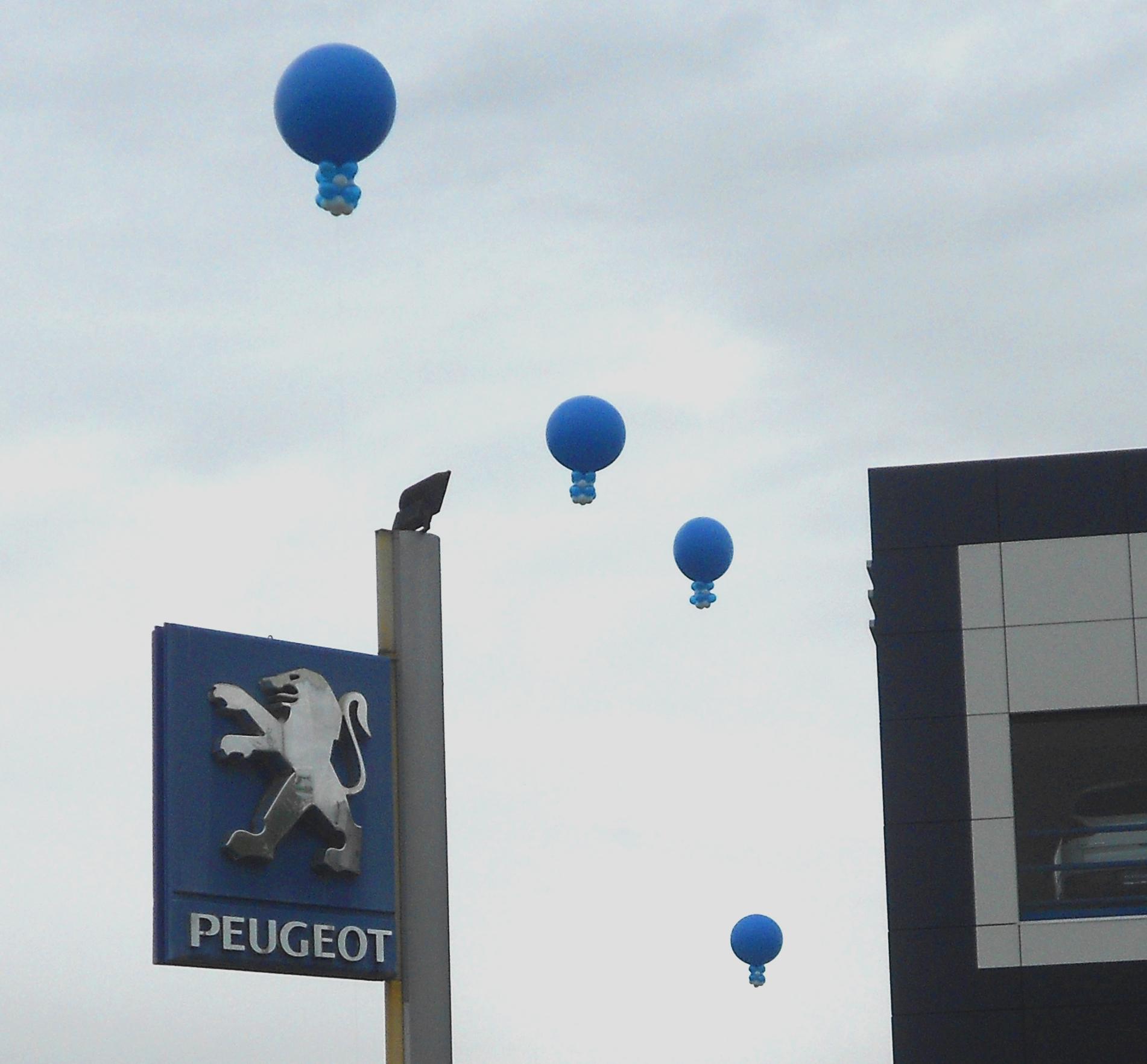 La concessionaria Peugeot a Pordenone, lancia con i palloncini con il logo la nuova auto Peugeot 208.